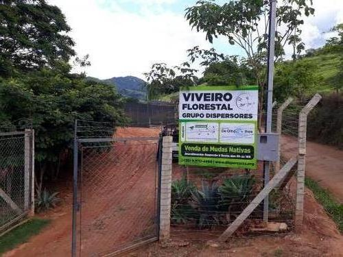 Viveiro Florestal Grupo Dispersores